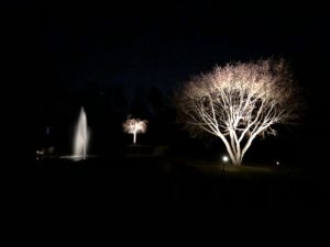 landscape lighting lewes de